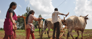 COVID-19: How 'Confarm' is leading the way in Telangana