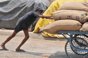 कैश के लिए किसानों की मजबूरी बने खुले बाजार, चिंता में डूबे यूपी-बंगाल के कोल्डस्टोर मालिक