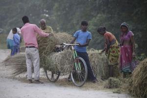 पीएम किसान सम्मान: बिहार के 31.57 लाख किसानों को नहीं मिला पैसा