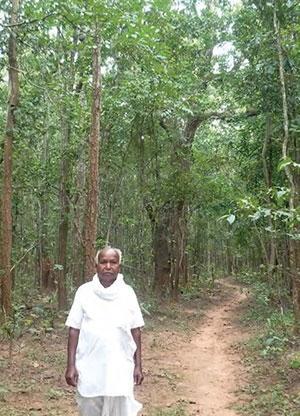 चित्र में गांव के पास के ही बचाए जंगल में खड़े स्वयं दामोदर कश्यप