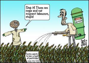 Simply put: Why pesticide