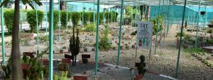 Uttarakhand opens biodiversity park in Haldwani to encourage conservation