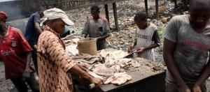 Why abattoirs in Nigeria pose a threat to health and environment