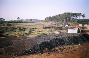 'Anti-coal lobbying detrimental to developing economies, needs a check'