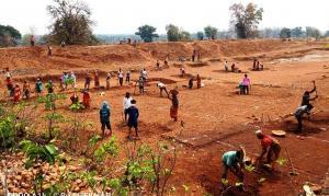 मनरेगा जरूरी या मजबूरी-4: 250 करोड़ मानव दिवस रोजगार हो रहा है पैदा