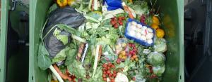 COVID-19: Food waste during pandemiccan worsen climate emergency