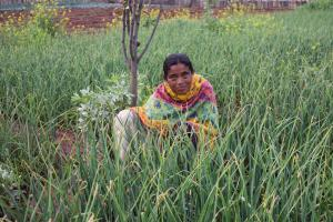 Breaking the cycle of poverty: Financial freedom for tribal women
