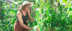 African farmers are younger than you think. Here is why