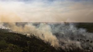 Fight fire with trade: How Europe can help save the Amazon