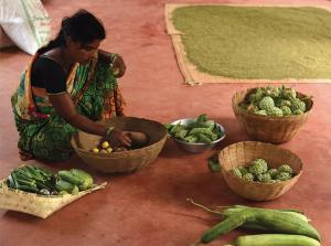 India's agrarian distress: A paradigm shift
