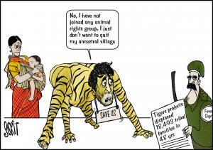 Cartoon: Project Tiger displaces tribals. Illustration: Sorit Gupto