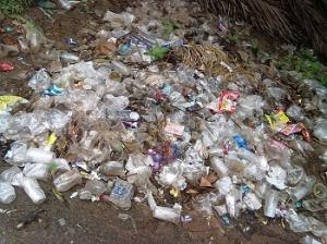 Plastic waste at Batlapalem, Andhra Pradesh. Photo: Wikimedia Commons