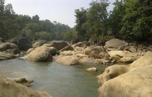 Gram sabhas object to mining in Chhattisgarh's Hasdeo Arand forest. Photo: Wikimedia Commons