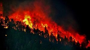 Anthropogenic emissions can impact pattern of wildfires says new study