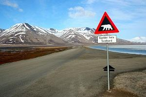 Disney to make a film on climate change-affected Svalbard. Photo: Wikimedia Commons