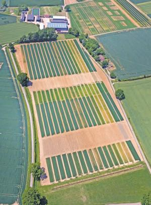 'Crop residue can boost soil health'