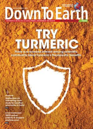 TRY TURMERIC