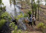 क्या बारिश से ही बुझ सकती है जंगल की आग