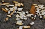 Cigarette butts cause heavy metals to enter food chain, says study