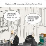 Damming biodiversity