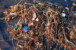 Great Pacific Garbage Patch 'much larger' than earlier estimated