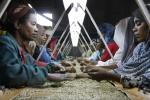 Africa's economic progress requires investment in people: ECA