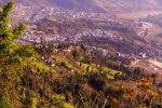 Experts advise community-led forest conservation in Himalayas