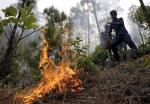 Two successive fires in Bandipur National Park; officials suspect role of tribals