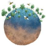 Why do conservationists hide when the bees dwindle?
