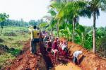 Wages worth Rs 3,066 crore unpaid under MGNREGS in 19 states