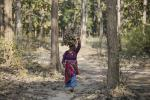 MoEF&CC takes back advisory to avoid honeycombing of forest land under FRA