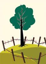 जंगल के सवाल