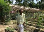 Assamese villagers become trailblazers in adaptive agriculture