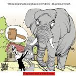 Close resorts in elephant corridors: Supreme Court