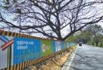 Aarey's Chipko moment