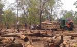 Gadchiroli villages to move SC against Maharashtra forest body
