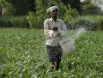Report warns of increasing risks of Nitrogen pollution
