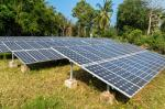 Find a way to deal with used solar panels coated with antimony, NGT to govt