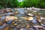 Study sheds light on functioning of global river-based ecosystems