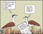 Great India Bustard, not in a good 'state'