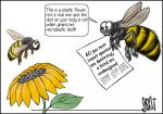Simply put: Insect species decline