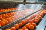 Focus on climate change: Food majors to US government