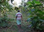 प्रकृति के असल रक्षक हैं वनवासी : वैश्विक रिपोर्ट