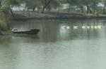 जल संकट का समाधान: एक-एक बूंद की कीमत जानता है यह गांव