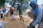 बिहार में 14 साल पहले खत्म किया गया था एपीएमसी एक्ट, किसानों को क्या मिला
