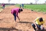 कृषि शिक्षा लेने के बाद खेती नहीं कर रहे हैं युवा