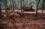 झारखंड के 43 हजार हेक्टेयर सारंडा वन क्षेत्र में खनन की छूट दे सकती है केंद्र