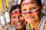Indigenous leaders flags Bolsonaro's team for UN talks