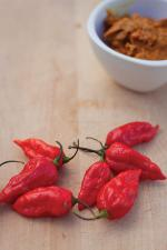 How 'Bhut Jolokia' lost its heat