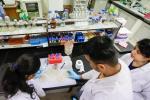 एंटीबायोटिक रेजिस्टेंस का जवाब है बैक्टीरियोफेजेस, मिल सकता है टीबी का इलाज